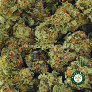 Buy Cannabis Sour Space Berry at Wccannabis Online Shop