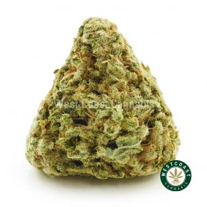 Buy Cannabis White Walker at Wccannabis Online Shop
