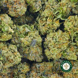 Buy Cannabis Pink Deathstar at Wccannabis Online Shop