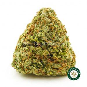 Buy Cannabis Pink Unicorn at Wccannabis Online Shop